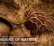 Wonders of Nature by Kalyan Varma